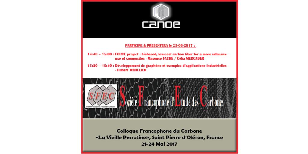 plateforme canoecanoe participe au colloque francophone du carbone sfec du 21 au 24 mai 2017. Black Bedroom Furniture Sets. Home Design Ideas